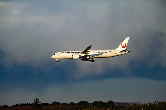 Japanese Airline